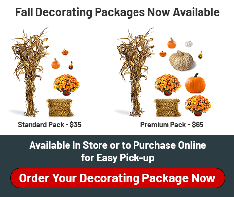 Fall Decorating Packages Now Available. Standard Pack - $35 Premium Pack - $65. Available In Store or to Purchase Online for Easy Pick-Up. Order Your Decorating Package Now.