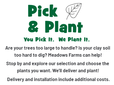 Pick & Plant You Pick It. We Plant It. Are your trees too large to handle? Is your clay soil too hard to dig? Meadows Farms can help! Stop by and explore our selection and choose the plants you want. We'll deliver and plant! Delivery and installation include additional costs.
