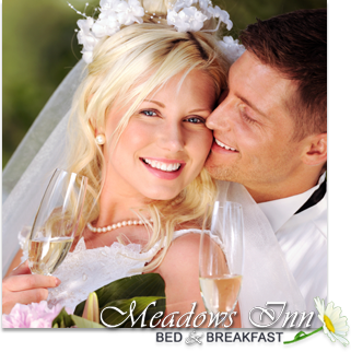 meadowsinn-weddings
