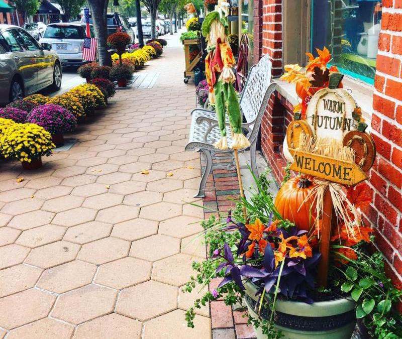 OCTOBER NEWSLETTER – FALL in NEW BERN !