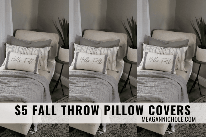 $5 Fall Throw Pillow Covers