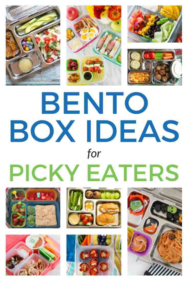 collage of bento boxes with text