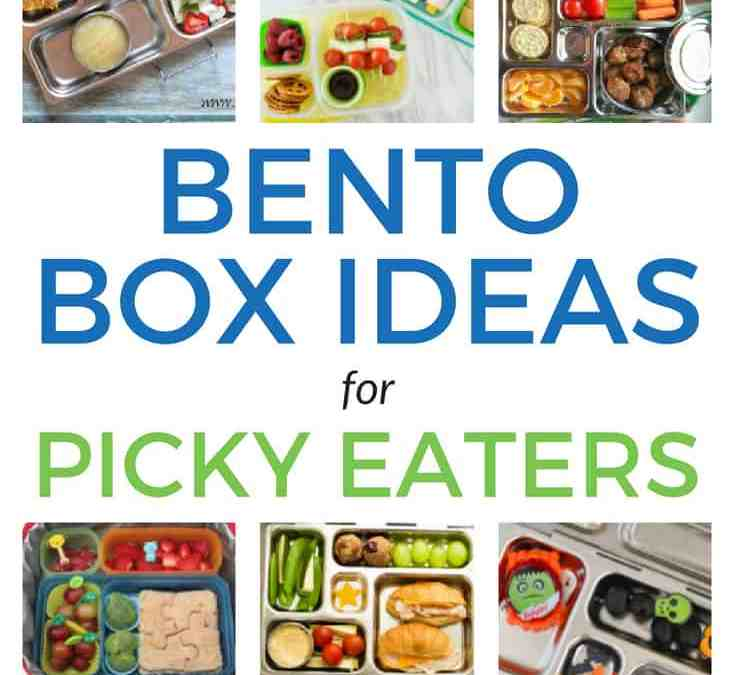 10 Bento Box Ideas (your picky eaters will actually eat)