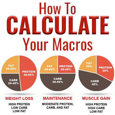 Macro Calculator | Find Your Macro Ratio at Meal Prep on Fleek