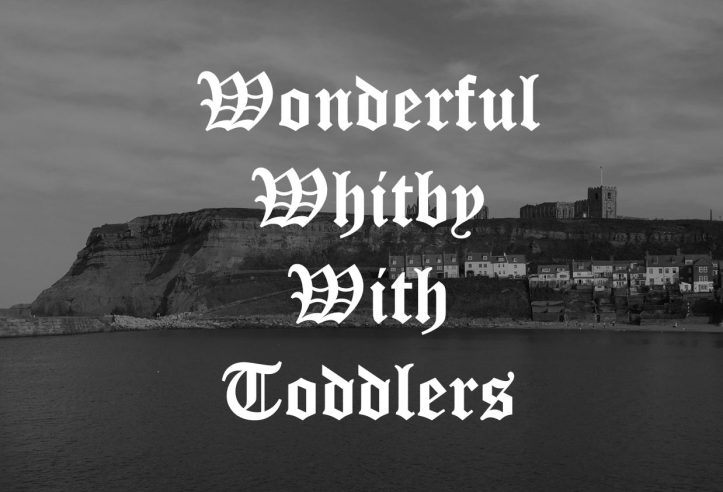 Steps cottage whitby abbey coast gothic family holidays days out fun