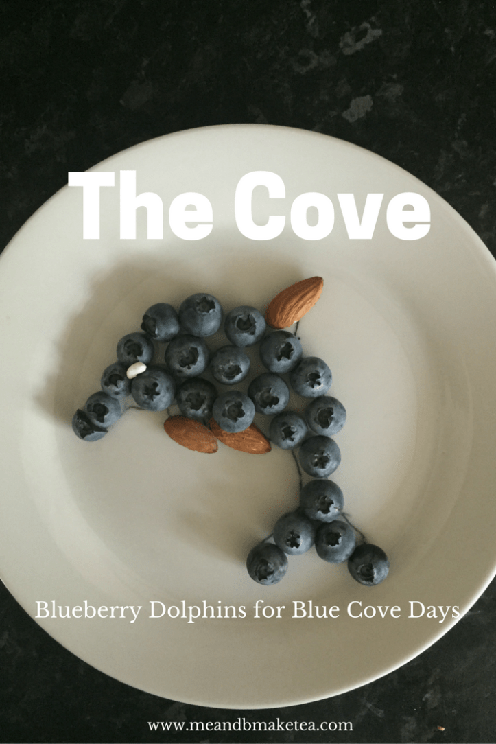the cove taiji Japan dolphin Hunting ric o barry whales raising awareness