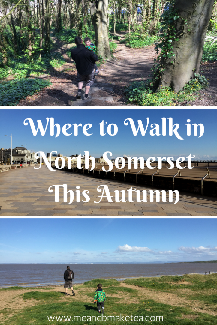 Where to Walk in North Somerset This Autumn.png