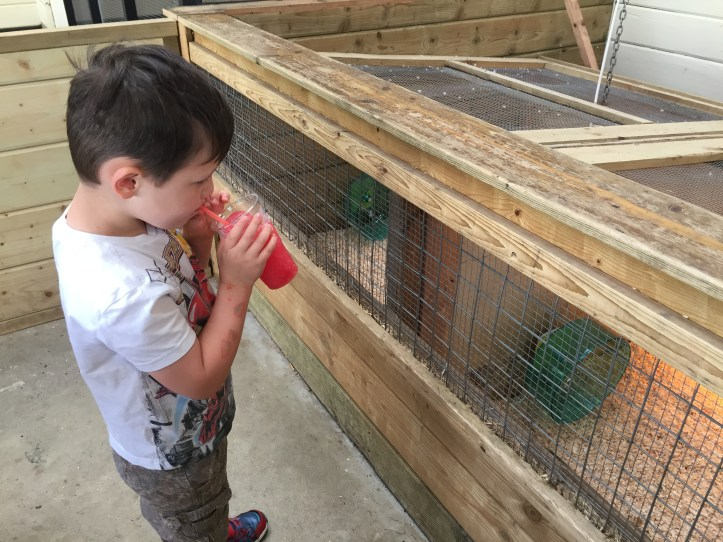 world of country life slushie farmer lees food barn