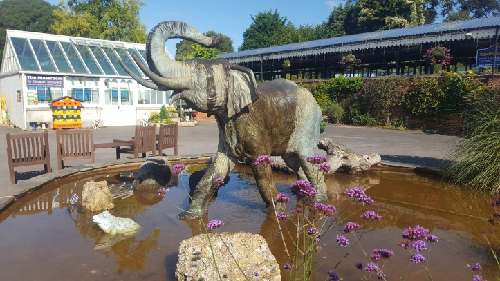 https://www.bibicton botanical gardens in Devon water fountain at the great lake and housectongardens.co.uk/