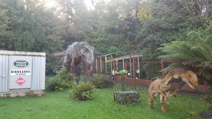 t rex show at coombe martin dinosaur park