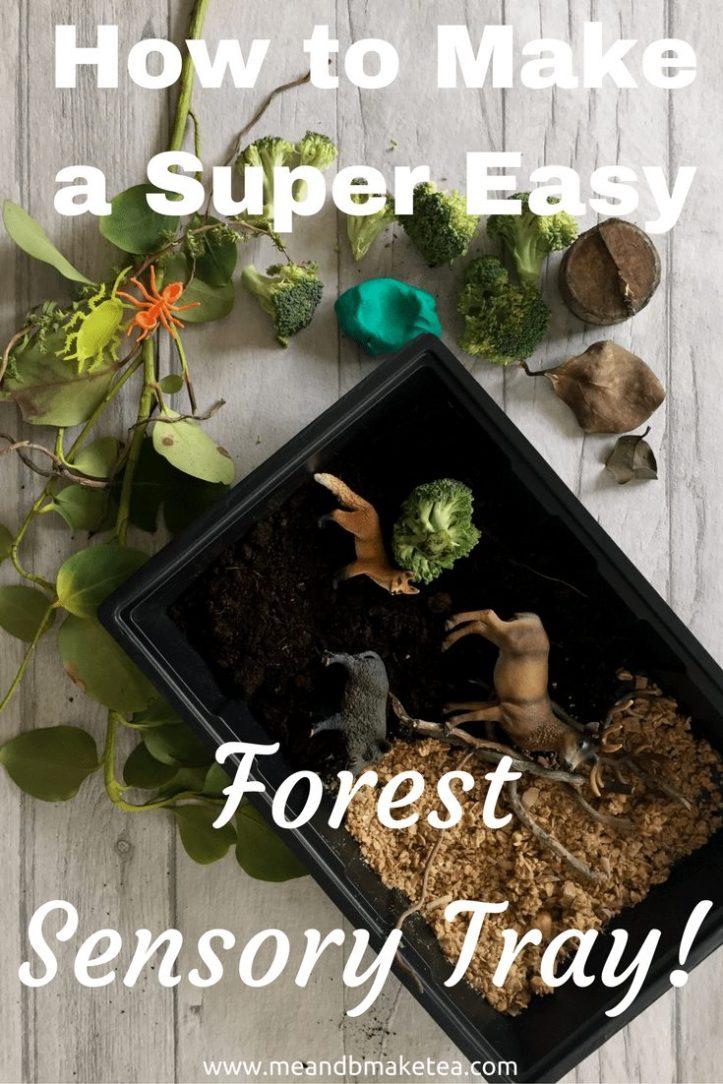 forest sensory tray activity