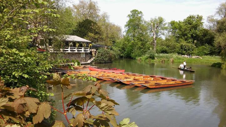 hidden gems in cambridge for the whole family - museums for the family