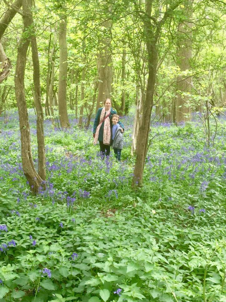 bedfordshire family days out moggerhanger park with kids in the bluebell fields