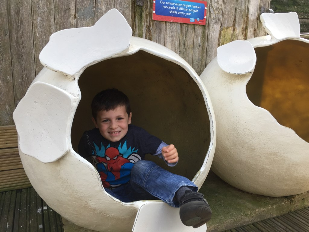 Helf term things to do with kids at Bristol zoo
