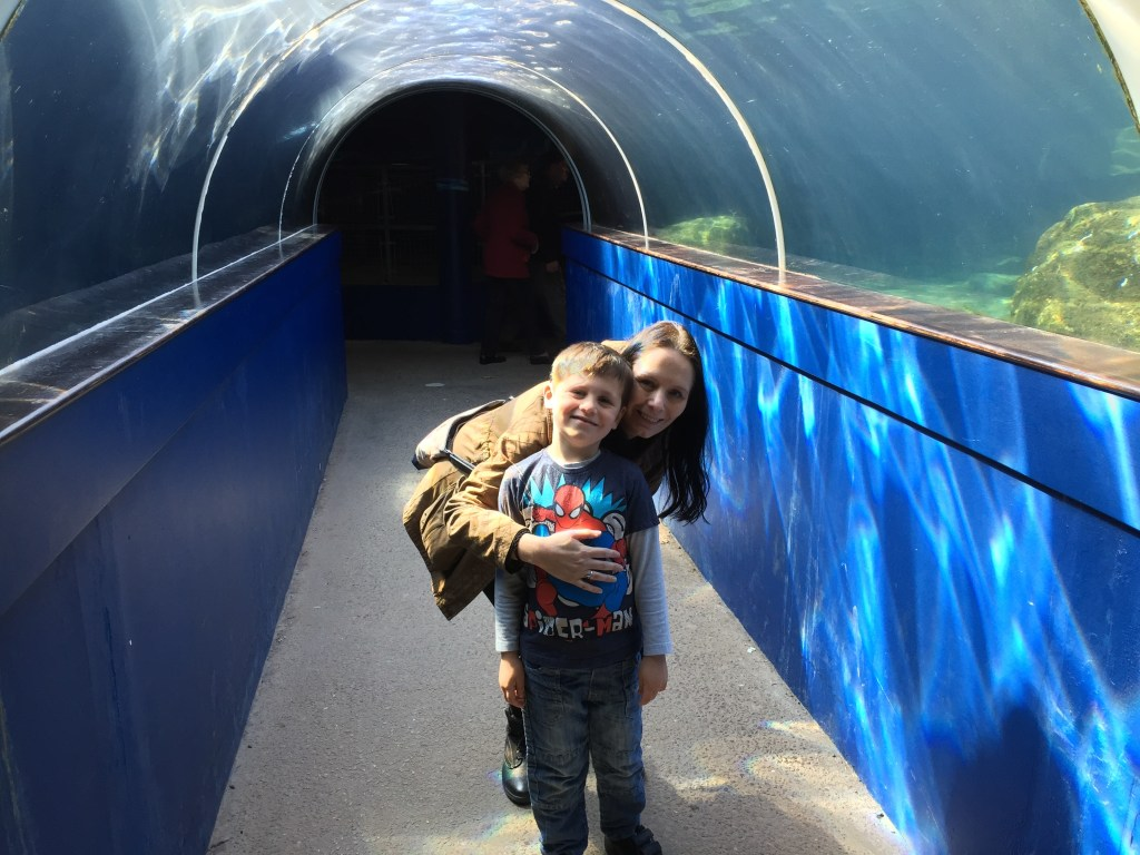 aquarium - Helf term things to do with kids at Bristol zoo