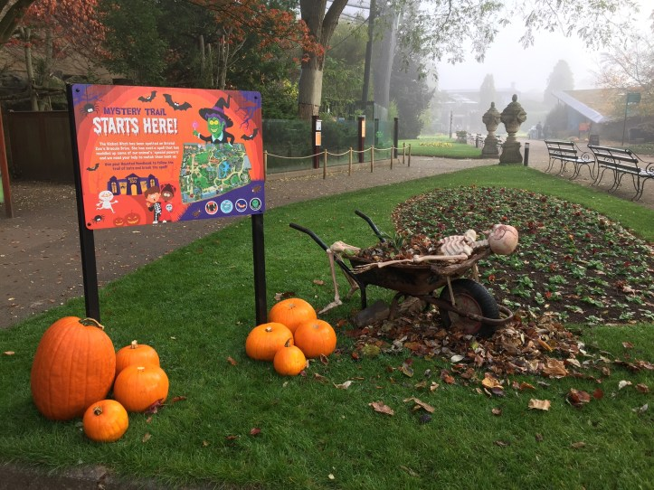 Half term activities at Bristol Zoo this Halloween - review and photos