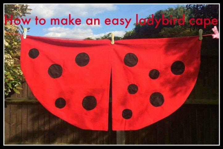 World book day dressing up ideas - Ladybird ideas