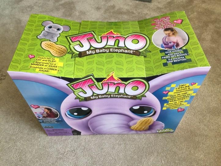 Juno my baby elephant in the box