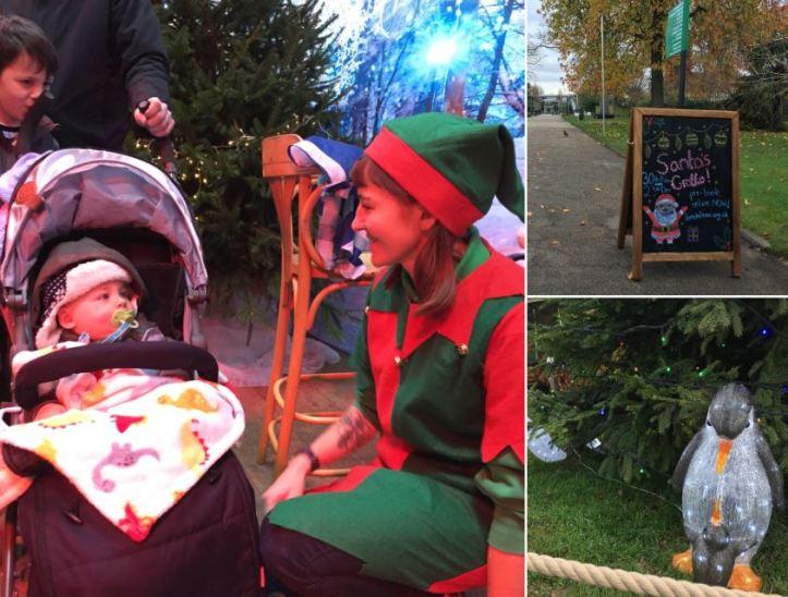 bristol zoo santas grotto visit - baby meets elves
