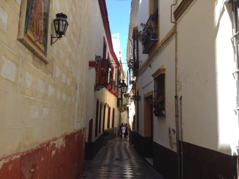 Chasing flamenco in seville