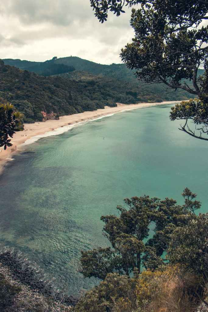 New Zealand Beaches