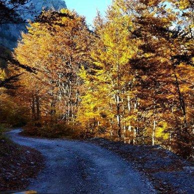 Theth-autumn