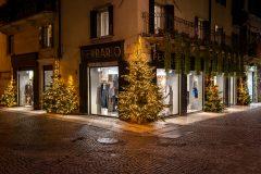 A view of Verona Italy