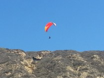 Hang gliding is a hugely popular sport at this beach because of the great cliffs