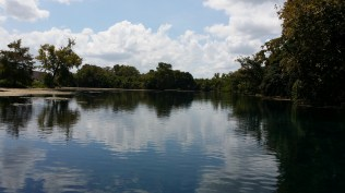 2015-09-04-san-marcos-wetlands-15