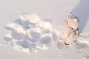 Snow Hippo