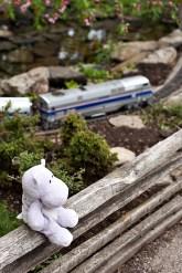 Model Railroad Garden and Tiny Hippo