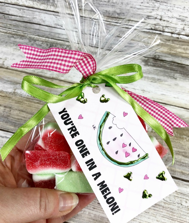 Watermelon Lunchbox Note Sprinkle Kindness