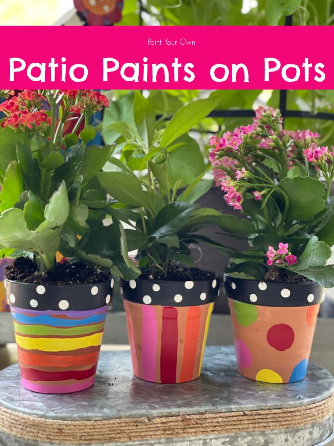 Patio Paints for Terra Cotta Pots (1)