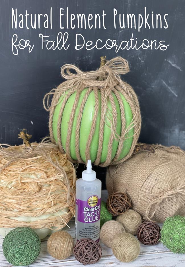 Natural Element Pumpkins for Fall Decorations