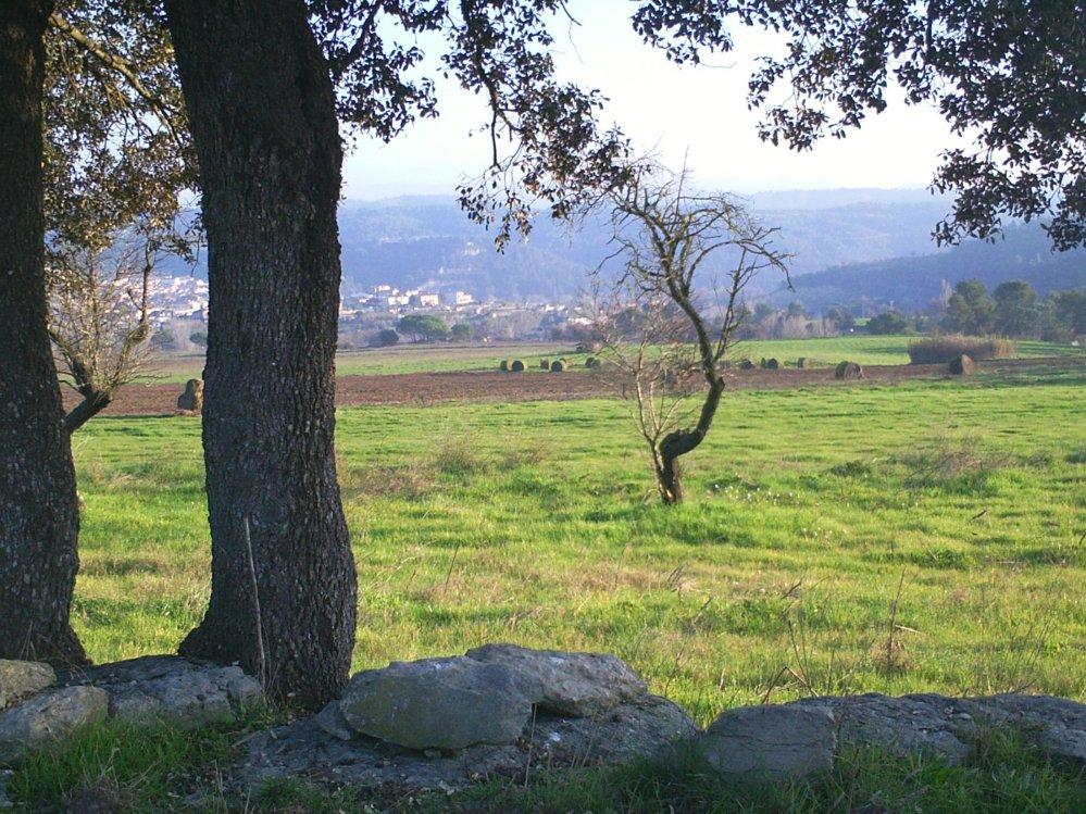 Sant Genís de la Vall dels Horts