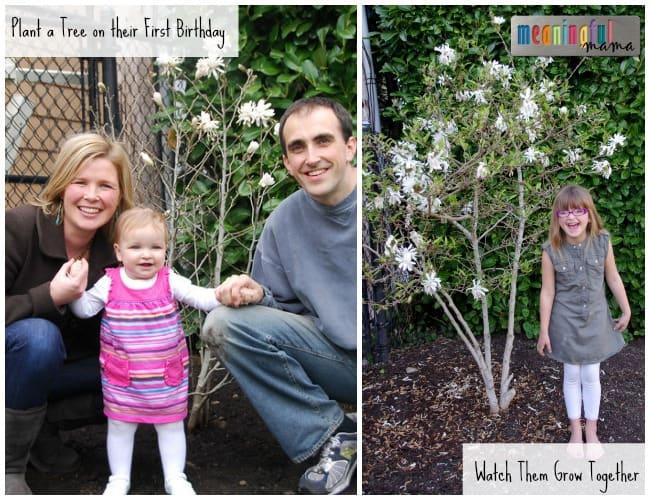 Plant a Tree - First Birthday Ideas