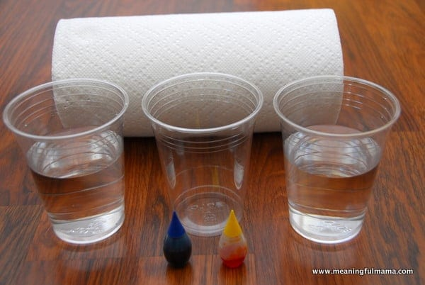 1-#flexibility #science experiment #absorbancy #kids-008