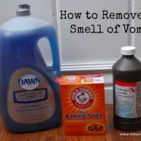 How to Remove the Vomit Smell from Anything