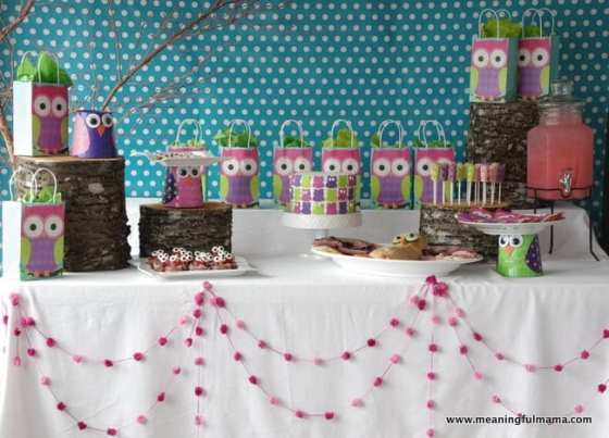 1-owl birthday party food decoration ideas kenzie 2014 Apr 5, 2014, 11-02 AM