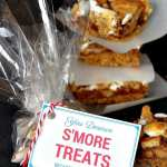 S'More Teacher Appreciation Gift