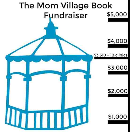 the-mom-village-book-fundraiser-chart