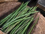 drum stick | vegetable name