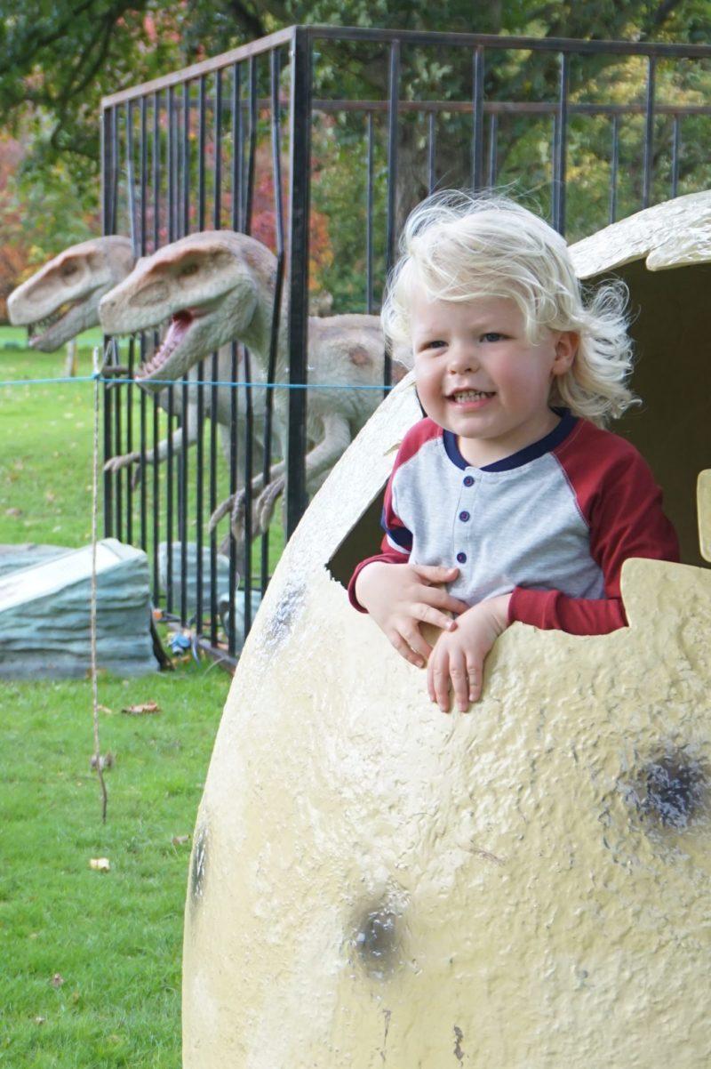 Jurassic Kingdom Leeds Egg
