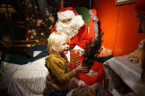 Little Diggers Christmas Grotto magic tree