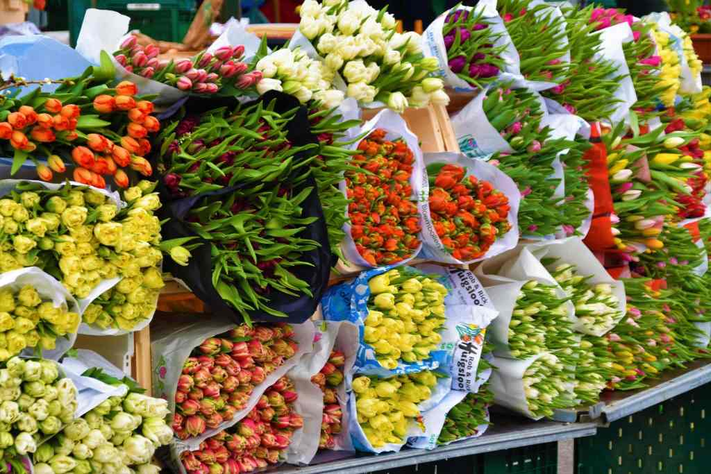 flower bouquets for sale at a free London market
