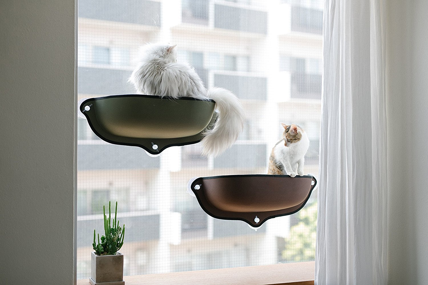 Cat Window Hammock With Cushion Amp Suction Cup When You