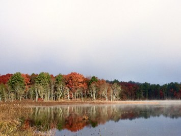 The Bash in the fall, from Haven Road. Photo by Carlotta Shearson.