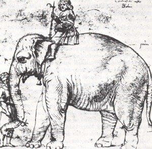 elephant_and_rider