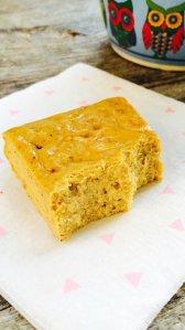 Low Carb Pumpkin Spice Protein Bars | Meat Free Keto - gluten free, grain free, sugar free