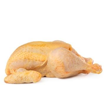 pollo-corral_860052